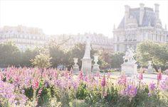 Paris Louvre and the Tuileries Gardens in Paris in Bloom