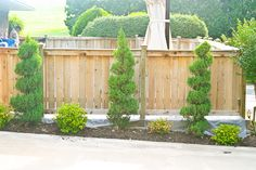 stained cedar fence | Southern Outdoor Specialist, LLC. Fence, Deck, and Patio Staining.