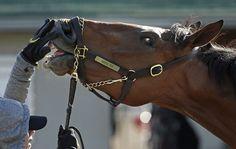 Photos: Atlanta's horse in the 2015 Kentucky Derby - Keen Ice