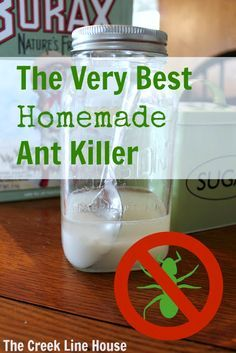 Quick and easy homemade ant killer, using only 3 ingredients. Get rid of those pesky bugs with this easy to make and use homemade ant killer! Ant Killer Recipe, Homemade Ant Killer, Ant Traps Homemade, Deep Cleaning Tips, Cleaning Hacks, Cleaning Crew, Cleaning Recipes, Cleaning Supplies, Insecticide