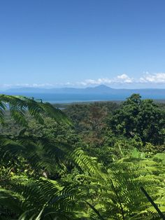 Looking back to Port Douglas from the Daintree