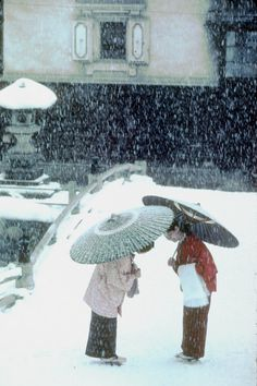 Gardening In The City Takayama, Japan. Two women in traditional dress greet each other in the city's old town: photo by Burt Glinn Japanese Culture, Japanese Art, Japanese Folklore, Kyoto, Winter In Japan, Culture Art, Parasols, Umbrellas, Turning Japanese