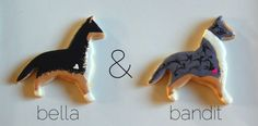 collie sugar cookies made to look like my brother's adorable doggies
