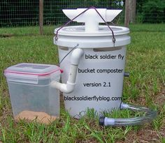 This baby will churn out delicious little larvae for your backyard chickens!  It's like chicken crack!!