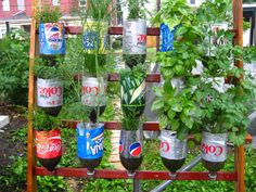 Collection in Recycled Garden Decor Recycled Out Door Decor Related Post From Using Recycled Items - Decorations for the yard vary in price as well as top Plastic Bottle Planter, Recycle Plastic Bottles, Plastic Bottle Crafts, Bottle Garden, Garden Pots, Vegetable Garden, Garden Crafts, Diy Garden Decor, Flower Vase Design