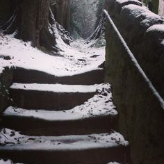 Steps in Enniskerry
