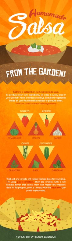 Grow your own SALSA GARDEN for deliciously fresh and flavorful salsas!