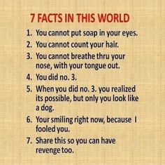 Really good stuff - 7 facts in this world - Joke for Tuesday, 05 March 2013 from site Really Funny Jokes Short Jokes Funny, The Funny, Funny Lady, Doctor Jokes, Just In Case, Just For You, Teacher Jokes, Jokes For Kids, Jokes Adult