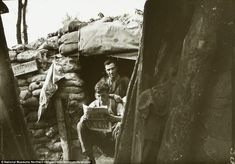 Soldiers in the summer of 1916 at Ploegsteert Wood near Messines in Belgium. A 'keep down' sign can be seen left