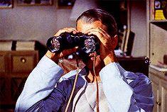 "BROTHERTEDD.COM - stanleyskubrick: ""Why would a man leave his... Rainy Night, Alfred Hitchcock, Rear Window, Comebacks, Cinema, Movies, Movie Theater"