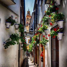 Follow us on insta! @ispanyoldefteri #instagram #spain #cordoba #andalusia #travelblog Andalusia, Spain, Instagram, Cordoba, Spanish