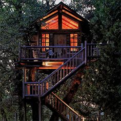Stunning treehouse designs.