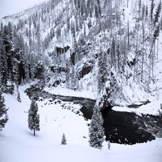 Explore Wyoming in the Winter | lifeatmyownpace Snowboarding, Skiing, Winter Vacations, Adventures By Disney, Best Places To Travel, Winter Activities, Disney Trips, Wyoming, The Good Place