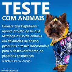 Aprovada restrição ao uso de animais em testes de cosméticos. O Plenário aprovou o substitutivo da Comissão de Meio Ambiente e Desenvolvimento Sustentável para o Projeto de Lei n. 6.602/2013, que restringe o uso de animais em atividades de ensino, pesquisas e testes laboratoriais para o desenvolvimento de produtos cosméticos.
