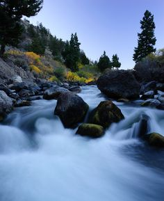 Yellowstone River, northern entrance to Yellowstone National Park; photo by Jay Williams