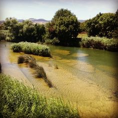 El río Araquil a su paso por Ibero... Así es #Navarra (Foto danisusanne en #Instagram)