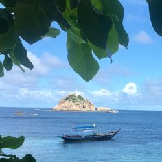Shark Island #kohtao #thailand | 1h30 long #swim and fun #diving