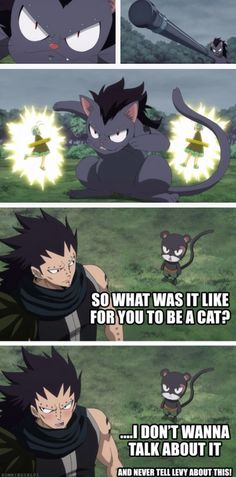 Nonononono!!!! We HAVE to tell Levy about this!!!!! >~< ||Gajeel and Lily|| #Fairy Tail