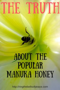 The Truth About The Popular Manuka Honey. There is a lot of fake and counterfeit Manuka honey available. Here are the facts to find out if you buy real or spend too much money on fake.
