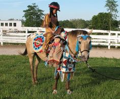CKRH Socialite with Sacajawea costume. Horse costume by Shirley Gentry Horse Show Mom, Horse Show Clothes, Show Horses, Native American Horses, Native American Pictures, Cute Horses, Beautiful Horses, Horse Halloween Costumes, Costumes For Horses