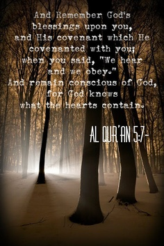 Quran. Most of us forget that the Kalima is a covenant, a contract. A commitment to hear and Obey.  We treat faith as one way ticket -asking for everything but not following any of Allah's orders. No wonder our Duas go unanswered .