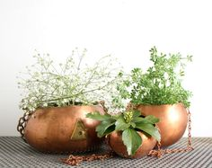 Copper Hanging Planters. Perhaps out of spray painted thrift store glass domes?