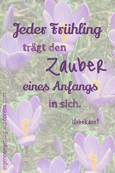 Natur im Frühling, wunderschöne Fotos und ein Video auf eigenewegeblog.wordpress.com