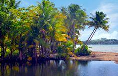 Mouth of the Blanco River, Naguabo, Puerto Rico by Ricardo Ruiz de Porras on Flickr.