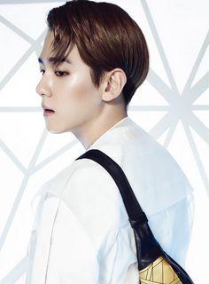 #EXO Baekhyun MCM BIONIC SERIES