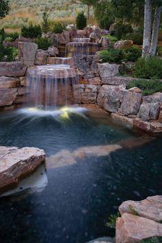 Image result for natural lap pool garden