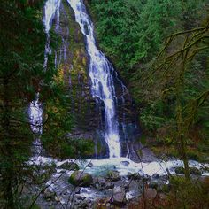 12 Easy Waterfall Hikes in the Seattle area (pictured, Boulder River). Perfect for a short afternoon jaunt! Hiking With Kids, Go Hiking, Hiking Trails, Hiking Boots, Great Places, Places To Go, Beautiful Places, Snoqualmie Washington, Snoqualmie Falls