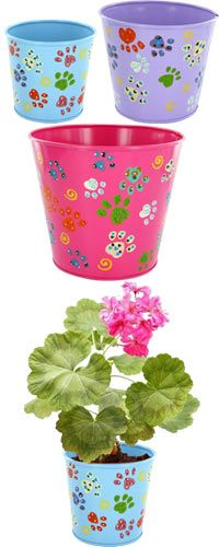Pastel Paw Print Planters - Set of 3 at The Animal Rescue Site