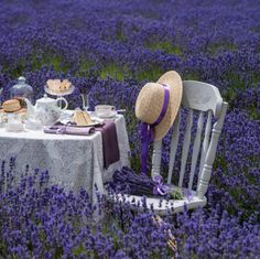 Sneak peek of our picture-perfect photoshoot at a Cotswolds lavender farm for our upcoming tea special issue! If only this picture could capture fragrance, too.   Photo and styling: Jane Hope