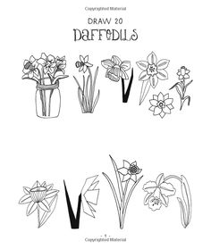 20 Ways to Draw a Tulip and 44 Other Fabulous Flowers: A Sketchbook for Artists, Designers, and Doodlers: Lisa Congdon: 9781592538867: Amazon.com: Books