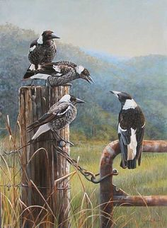 The Gate Post Gang - Australian magpies by Lyn Ellison