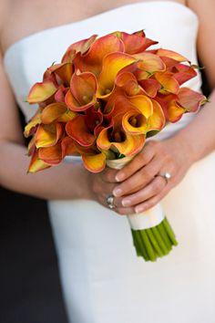 Wedding Ideas & Planning Advice from Weddzilla » DeAnna Pappas: How Do I Stay Within My Wedding Budget?