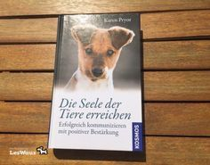 Der ängstliche Hund: was kann ich mit meiner Stimmung für ihn tun? | LesWauz