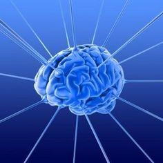 #Neurociencia : 4 Areas de Investigación Cerebral en 2012