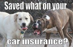 Don't pay too much for your car insurance!!