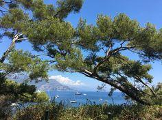 #Saint-Jean-Cap-Ferrat #AmazingView