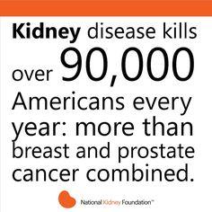 Kidney Cyst, Kidney Donor, Kidney Dialysis, Polycystic Kidney Disease, Kidney Cancer, Chronic Kidney Disease, Liver Disease, Prostate Cancer, National Kidney Foundation