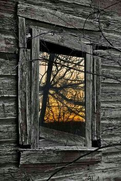 """Enjoy these 32 """"Creepy Abandoned Windows and Doors"""". It's no wonder we find these broken windows and doors creepy yet compelling. Old Windows, Windows And Doors, Planet Design, Broken Window, Window View, Through The Window, Old Doors, Old Barns, Doorway"""