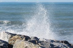 ..The sea!..