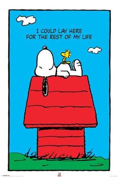 """Snoopy & Friends: """"I could lay here for the rest of my life"""""""