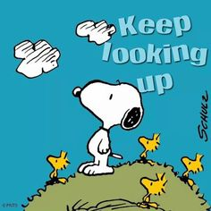 Snoopy, Woodstock and Friends Looking Upwards at the Sky and Clouds - Keep Looking Up