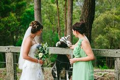 Wedding Held At Peppers Ruffles Lodge And Spa Gold Coast Hinterland Photography By Mt