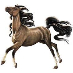 ИЗЯ/188 копий, верховая лошадь А - Лоwади