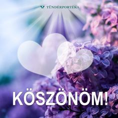 Hűtőmágnes 06. - Köszönöm. - Tündérportéka webáruház Birthday Wishes, Birthday Cards, Happy Birthday, Flower Aesthetic, Background S, Betty Boop, Party Gifts, Thankful, In This Moment