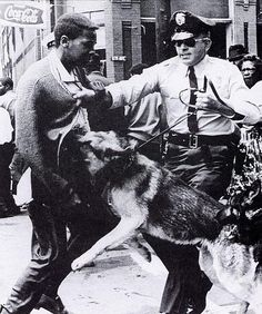 Birmingham Dog Attacks by Black History Album, via Flickr