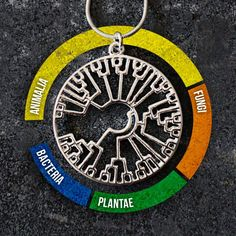 A awesome necklace that represents the relationships between the major groups of life on Earth.